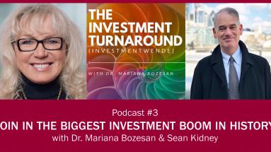 Investmentwende Podcast - Sean Kidney Poster